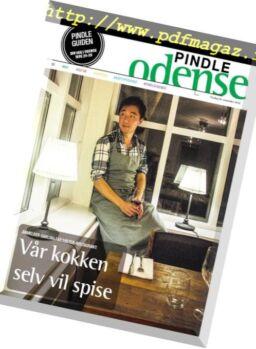 Pindle Odense – 20 november 2018