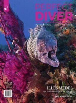 Perfect Diver – March-April 2021