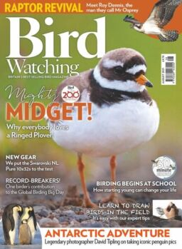 Bird Watching UK – August 2021
